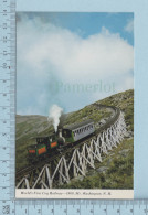 Train Transport - Cog Railway On A Trestle Bridge + Description - - Treinen