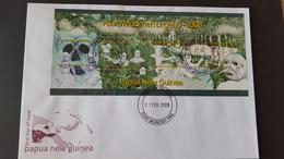Papua New Guinea 2008 Asaro Mudmen Legend Miniature Sheet FDC - Papua New Guinea