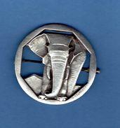 Epinglette élephant - Animals