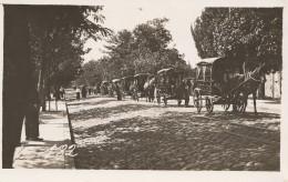 CARTOLINA NON VIAGGIATA PRIMI 900 ALBANIA SCUTARI (OCCUPAZIONE ITALIANA) (CT316 - Albania