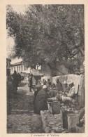 CARTOLINA NON VIAGGIATA PRIMI 900 CIABATTINI DI VALONA-ALBANIA-OCCUPAZIONI ITALIANE (CT352 - Albania