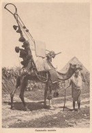 CARTOLINA VIAGGIATA 1936 ERITREA -COLONIE ITALIANE (CT548 - Eritrea