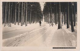 AK Walter Hahn 6180 Schneise 137 Moldava Moldau Winter Nove Mesto Neustadt Mikulov Niklasberg Rehefeld Holzhau Altenberg - Sudeten
