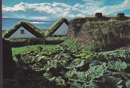 Iceland PPC Laufás I Eyjafirdi North Iceland 16/010 Photo Skúli Magnússon (2 Scans) - Iceland