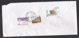Pakistan: Registered Cover To Netherlands, 1994, 3 Stamps, Bear, Biodiversity, Medical Tools, Cancel Camp PO (damaged) - Pakistan