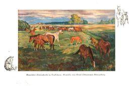 Gemischte Stutenherde In Trakehnen (Gemälde Von Ernst Schaumann-Königsberg)  /  Druck, Entnommen Aus Zeitschrift /1936 - Books, Magazines, Comics