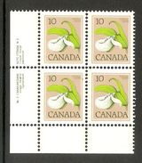 006187 Canada 1978 10c Plate Block 2 LL MNH - Plate Number & Inscriptions