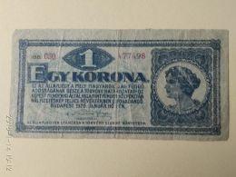 1 Korona  1920 - Ungheria