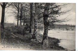 Bouaye : Bords Du Lac De Grand Lieu - Bouaye