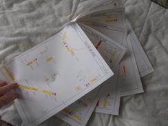 Lot De Documents En Rapport Avec Le Matériel Du Cirque Pinder Saumur 2002 - Old Paper