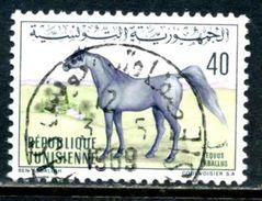 Tunisie 1968 Y&T 661 ° Cheval - Tunisia