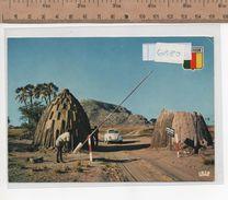 6880 ENTRATA CAMPO DI WAZA - Camerun