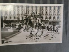 TI - 69 - LYON - La Fontaine BARTHOLDI Et Les Pigeons De La Place Des Terreaux - Lyon