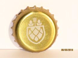 Capsules Ou Plaques De Muselet  Bière ST FEUILLIEN GRAND CRU - Beer