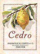 """07190 """"DOMENICO COTTI E C. - TORINO - CEDRO""""  ETICHETTA ORIGINALE. - Labels"""