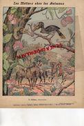 PROTEGE CAHIER-IMPRIMERIE DUCOURTIEUX LIMOGES-METIERS CHEZ LES ANIMAUX-LE CALAO CHARPENTIER RHINOCEROS-INDE JAVA SUMATRA - Buvards, Protège-cahiers Illustrés