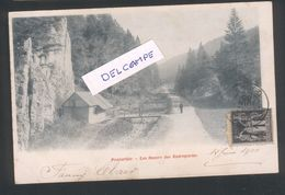 25 - Pontarlier  Les Dames Des Entreportes - Douane - Douanier - Pontarlier