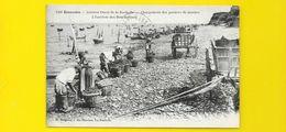 ESNANDES Chargement Des Paniers De Moules (Bergevin) Charente Maritime (17) - France