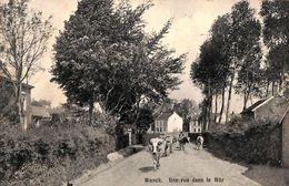 Wonck (Bassenge) - Une Rue Dans Le Wâr (animée, Vaches, 1919) - Bassenge