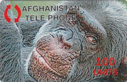 AFGHANISTAN - Orangutan , Animal, Fake - Afghanistan