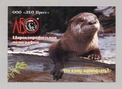 ANIMALS Pocket Calendar 2002 UKRAINE Fauna Otter Lion Leo - Calendars