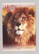 ANIMALS Pocket Calendar 2008 UKRAINE Fauna Lion Leo - Calendars