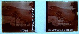 PHOTO STEREO SUR PLAQUE DE VERRE - ALSACE - FERME D'ECK - VALLEE DE LA LAUCH - 10,6 X 4,4 Cm - Photos Stéréoscopiques