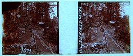 PHOTO STEREO SUR PLAQUE DE VERRE - ALSACE - HILSERFIRST - CAGNA - ANIMEE - 10,6 X 4,4 Cm - Photos Stéréoscopiques