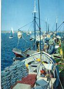 Le Croisic Les Sardiniers Dans Le Port Bateaux De Pêche - Le Croisic