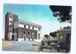 PALIANO ( FROSINONE ) EDIFICIO SCOLASTICO - EDIZ. BERNOLA 1965 (1492) - Frosinone