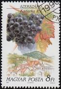 HUNGARY - Scott #3258 Kadarka, Szekszard (*) / Used Stamp - Fruit