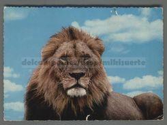 V4047 Animali  LEONE LION EAST AFRICA VG STAMP TANZANIA (m) - Leoni
