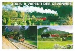 Train à Vapeur Des Cévennes: Anduze St Saint-Jean-du-Gard, Gare Du T.V.C. - Carte Multivues Non Circulée - Trains