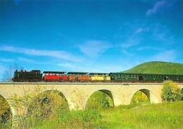 Train à Vapeur Des Cévennes: Anduze St Saint-Jean-du-Gard, Le Viaduc De La Salindrinque - Carte Non Circulée - Trains