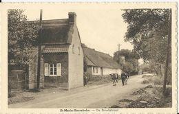 St-Maria-Hoorebeke.  -   De Broekstraat - Horebeke