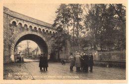 Beauraing - CPA - Avenue De La Grotte Et Arbre Des Apparitions - Beauraing