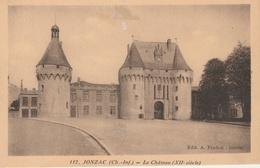 18 / 1 / 211    JONZAC  ( 17 )  -  LE CHÂTEAU  ( XIIe SIÈCLE  ) - Jonzac