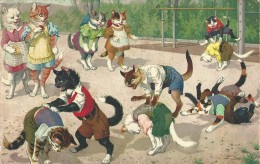 Kat Chat Cat Katze - Max Kunzli - N° 4696 - 1948 - Chats