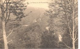 La Roche En Ardenne - CPA - Le Hérou Vue De Nisramont - La-Roche-en-Ardenne