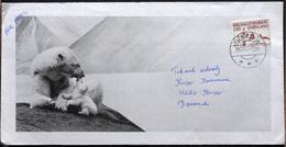 Greenland  1977 Letter From  Greenland Sukkertoppen  To Korsør Denmark   ( Lot 4469 ) - Cartas