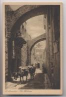 JÉRUSALEM - Via Dolorosa - Mulets - PALESTINE - Animée - Palästina