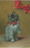 Kat Chat Cat Katze - Sperlich - Peluba - 242 - 1923 - Gatti