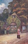Illustrateur The Old Lodge Wembley Park Middlesex  Ed Raphael Tuck -  CPA  9x14 BE - Autres Illustrateurs