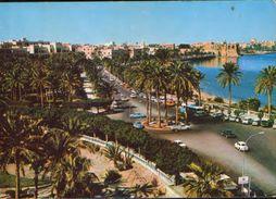 Libya - Postcard Written  - Tripoli - Avenue El Fath - 2/scans - Libya