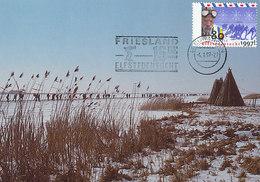 D32174 CARTE MAXIMUM CARD FD 1997 NETHERLANDS - FRIESLAND 11 CITIES SPEED SKATING CP ORIGINAL - Winter (Other)