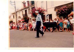 PHOTO--CORRIDA Course De Vachette Dans La Rue---voir 2 Scans - Sport