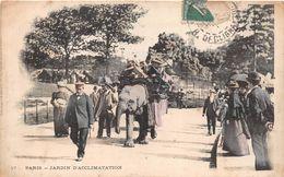 ¤¤  -  PARIS   -   Le Jardin D'Acclimatation   -  Promenade Sur L'Eléphant       -  ¤¤ - Arrondissement: 16