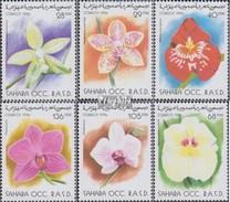 Sahara Ausgabe Der Exilregierung Ohne Gültigkeit Im Int. Postverkehr Nr.9 Postfrisch 1996 Blumen - Spanish Sahara