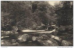 SART-lez-SPA - La Hoëgne - Les Rapides - Edition : F. Misson, Photographe, Spa  N° 84 - Jalhay