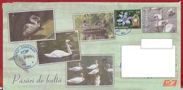 BIRD BIRDS GEESE SWANS  ROMANIA POSTAL STATIONERY - Swans